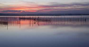 Parc Natural de l'Albufera | Ticket & Tours Price Comparison