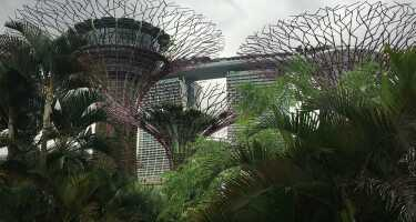 Gardens by the Bay | Ticket & Tours Price Comparison