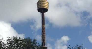 Sydney Tower | Ticket & Tours Price Comparison