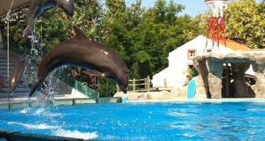 Lisbon Zoo | Ticket & Tours Price Comparison