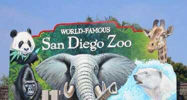San Diego Zoo | Online Tickets & Touren Preisvergleich
