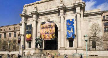 American Museum of Natural History | Ticket & Tours Price Comparison