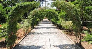 San Anton Gardens | Ticket & Tours Price Comparison