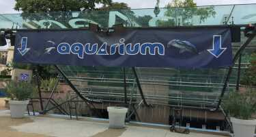 Aquarium de Paris - Cinéaqua | Ticket & Tours Price Comparison